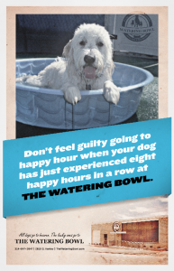 A dog in a pool telling you to enjoy happy hour.