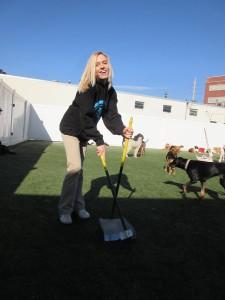 2015 Feb Staff Spotlight: Brittany Diedrich