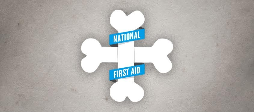 National Pet First Aid Awareness The Watering Bowl