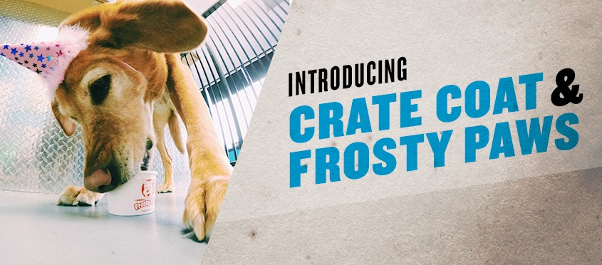 TWB Crate Coat & Frosty Paws