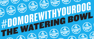 Do more with your dog, The Watering Bowl Doggy Daycare and Boarding