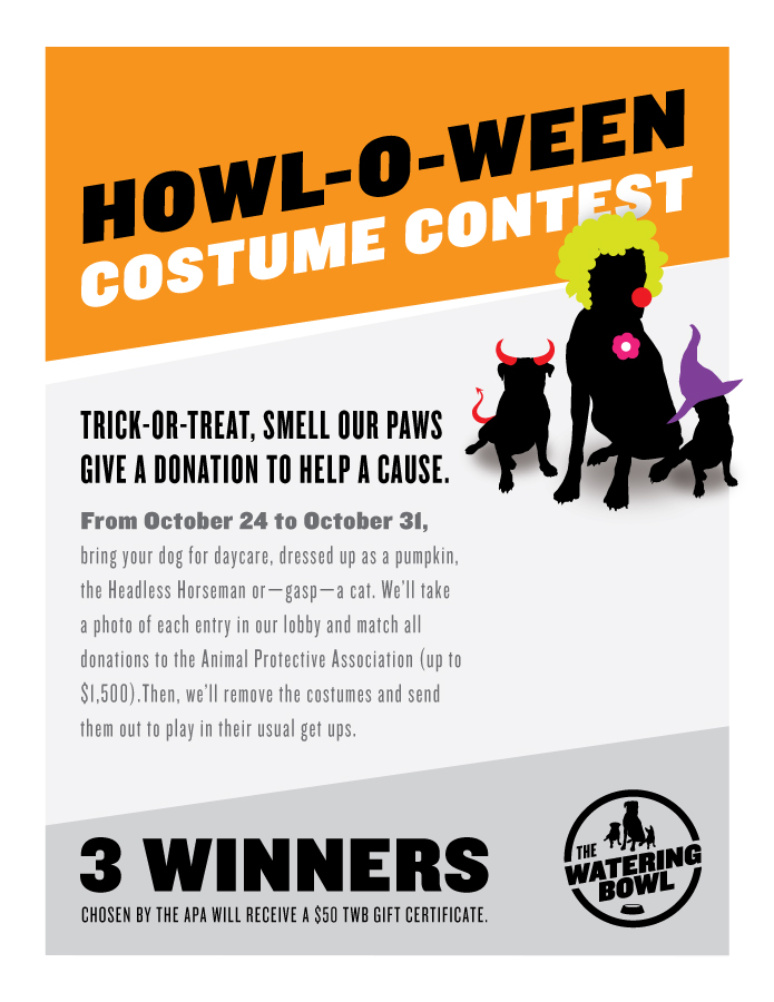 The Watering Bowl 2016 Costume Contest