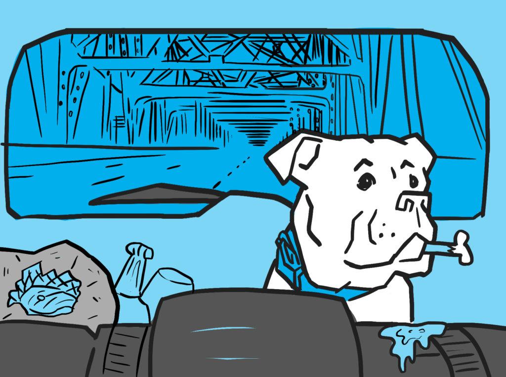 Bulldog car ride for doggie boarding St. Peters Missouri