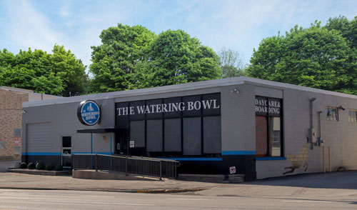 The Watering Bowl location on S Hanley Rd. St. Louis